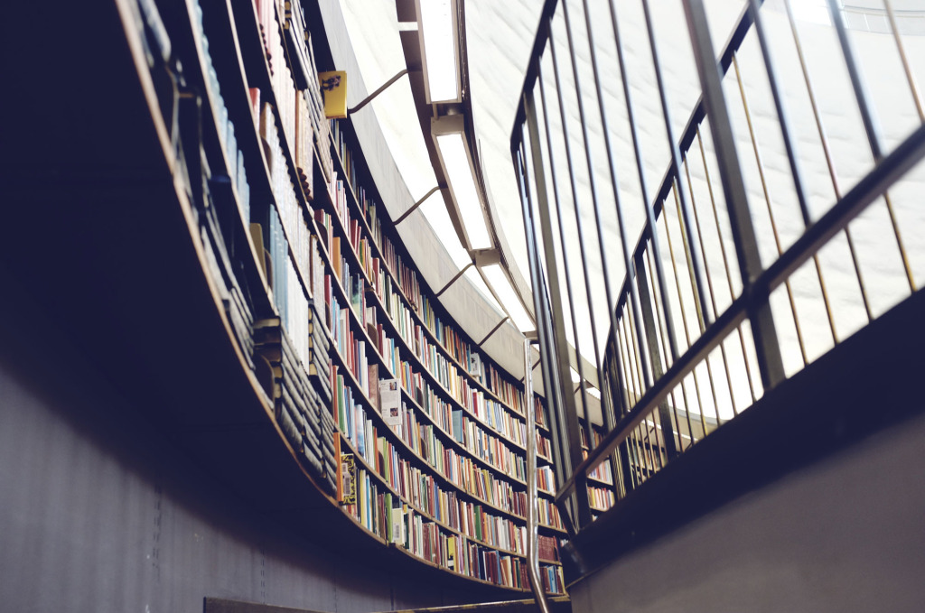 Biblioteca. PATRIK GOETHE