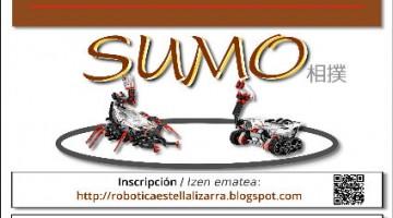 VI Campeonato de Robótica de Estella-Lizarra el 16 de abril
